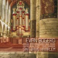 Grote of St. Bavo Haarlem, orgel