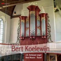 Bert Koelewijn